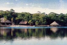 Photo of Turismo en Loreto – Vive las mejores aventuras en la selva Loretana