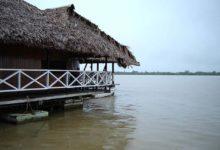 Photo of Turismo en Ucayali – Vive y disfruta de la Naturaleza en este departamento