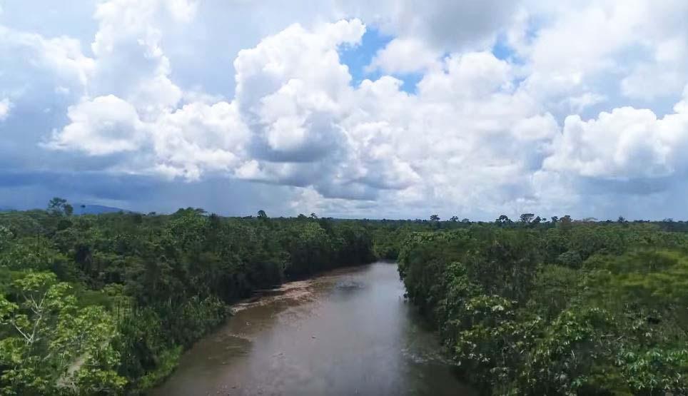 Laguna de Yarinacocha
