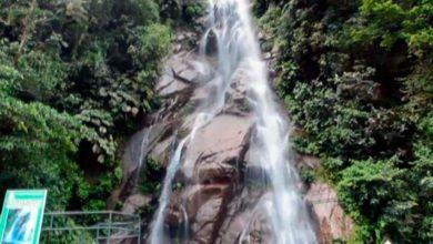 Photo of Boquerón del Padre Abad: Visita y maravillate con sus hermosas cataratas