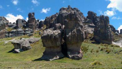 Photo of Bosque de piedras de Huayllay – Un santuario rocoso de gran belleza
