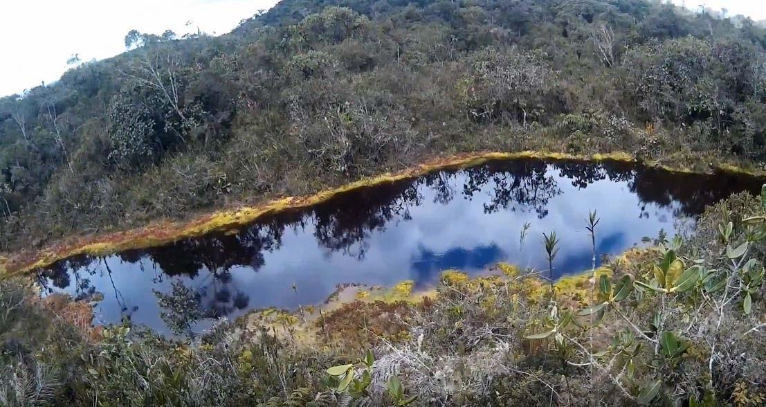 laguna negra bosque shollet pasco