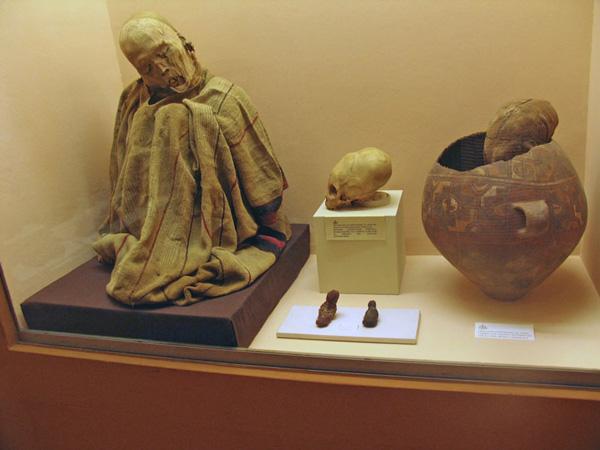 Photo of Museo de Chiribaya: Visita este lugar y descubre sus atractivos históricos