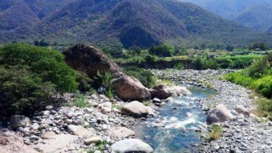 Photo of Refugio de Vida Silvestre Laquipampa – Disfruta de su ecosistema único