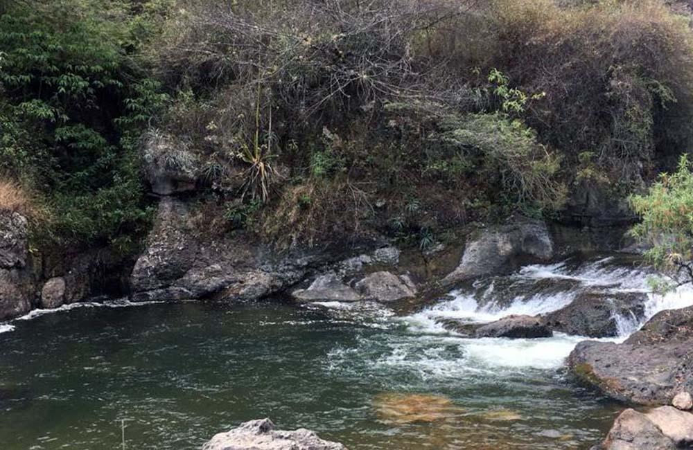 Photo of Zona Reservada de Udima: Conoce su biodiversidad y restos históricos