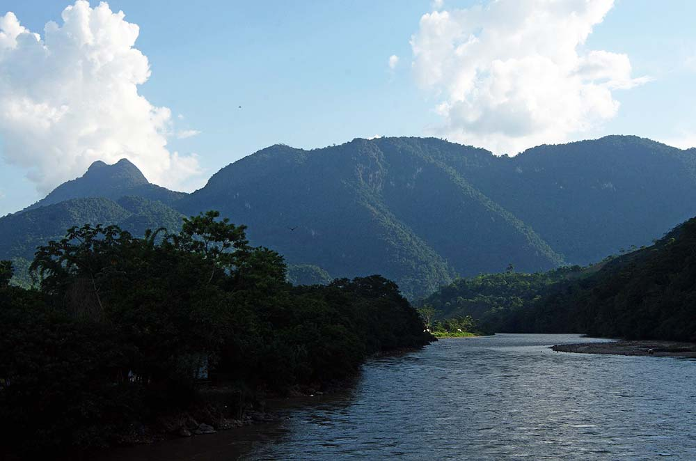 Photo of Parque Nacional Tingo María: Conoce 4 de sus atractivos