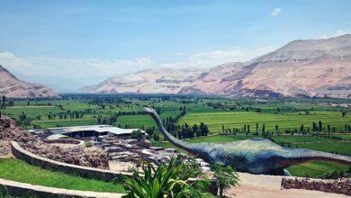 Photo of APLAO – Conoce su parque jurásico y sus hermoso atractivos naturales