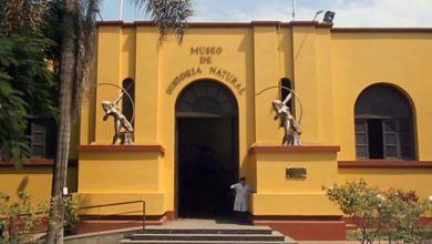 Photo of Museo de Historia Natural de la UNMSM en Lima – Exhibición única