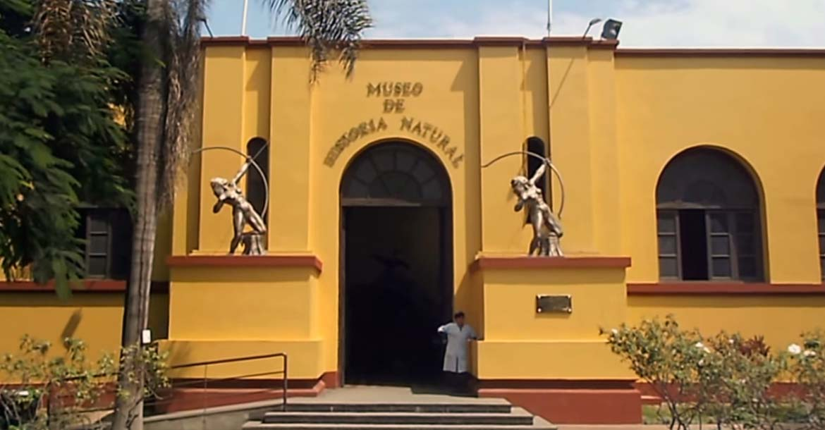Photo of Museo de Historia Natural de la UNMSM en Lima – Exhibición única