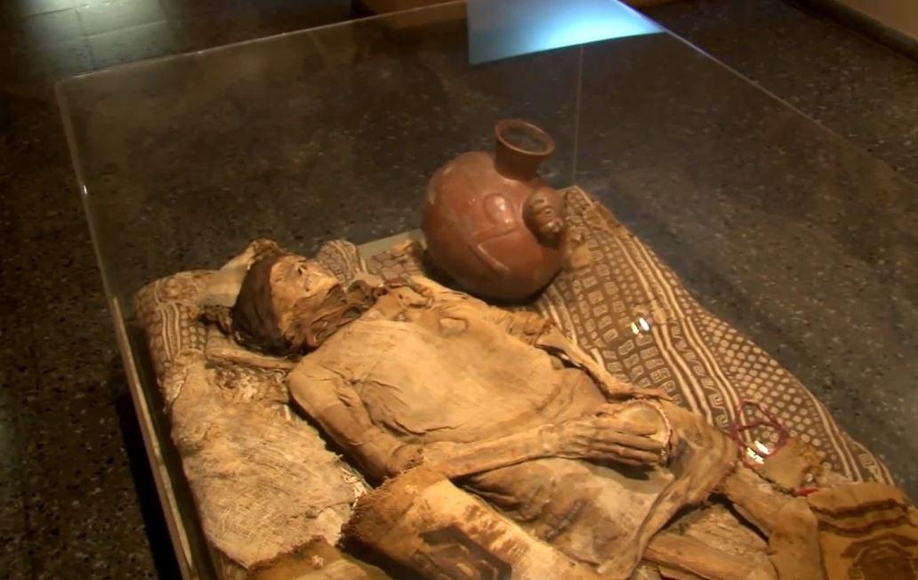 Momia de una mujer en exhibición en el Museo Bruning