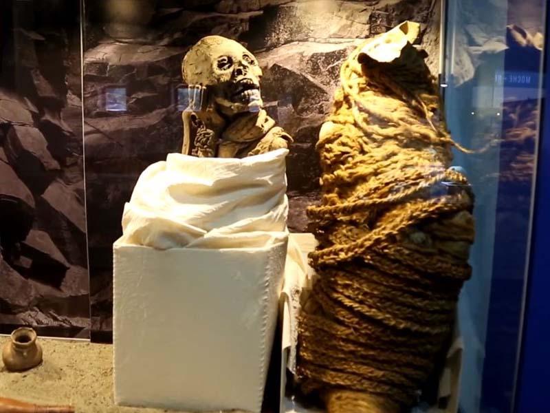 """Momia en el Museo Arqueológico de Áncash """"Augusto Soriano Infante"""""""