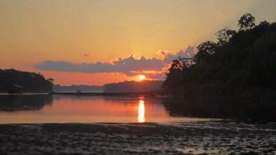 Photo of Tambopata – Disfruta de este sin igual corredor turístico y su biodiversidad