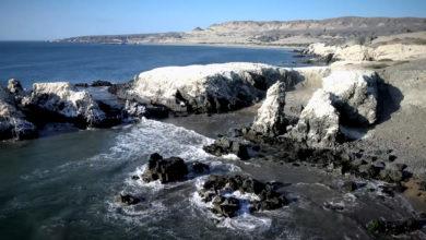 Zona Reservada Illescas en Piura