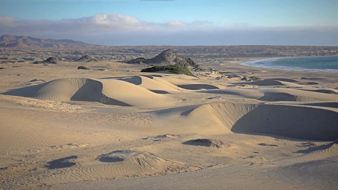 Sechura - Un desierto lleno de naturaleza