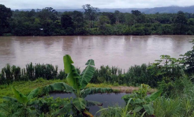 Provincia de Tocache en San Martin